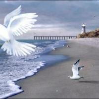 Mensagens e Poemas Espíritas