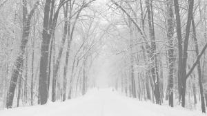 inverno da alma
